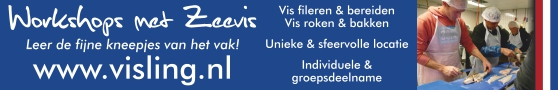 Visling Workshops Fileren